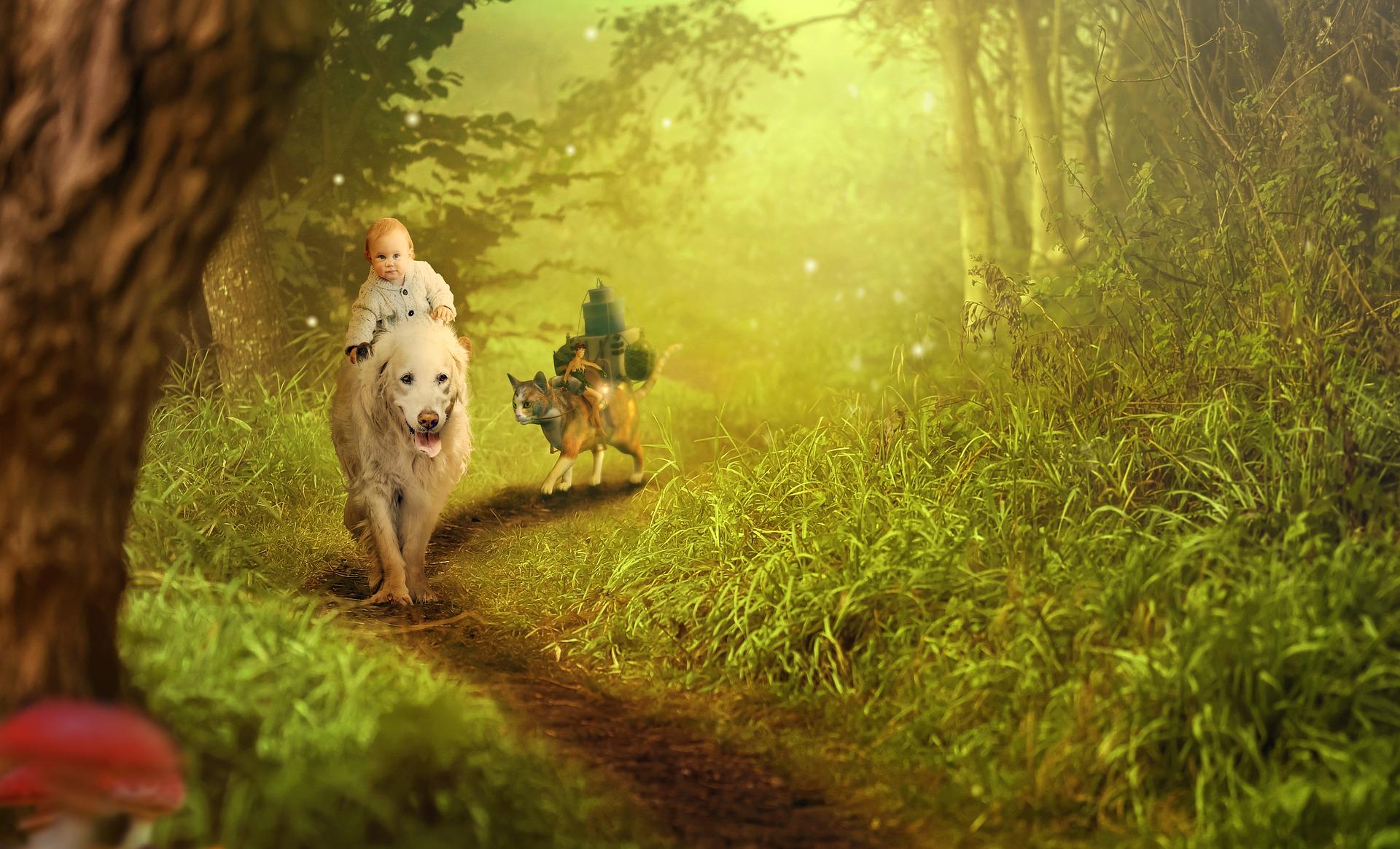 Die 18 besten Märchenbuch Kleinkinder