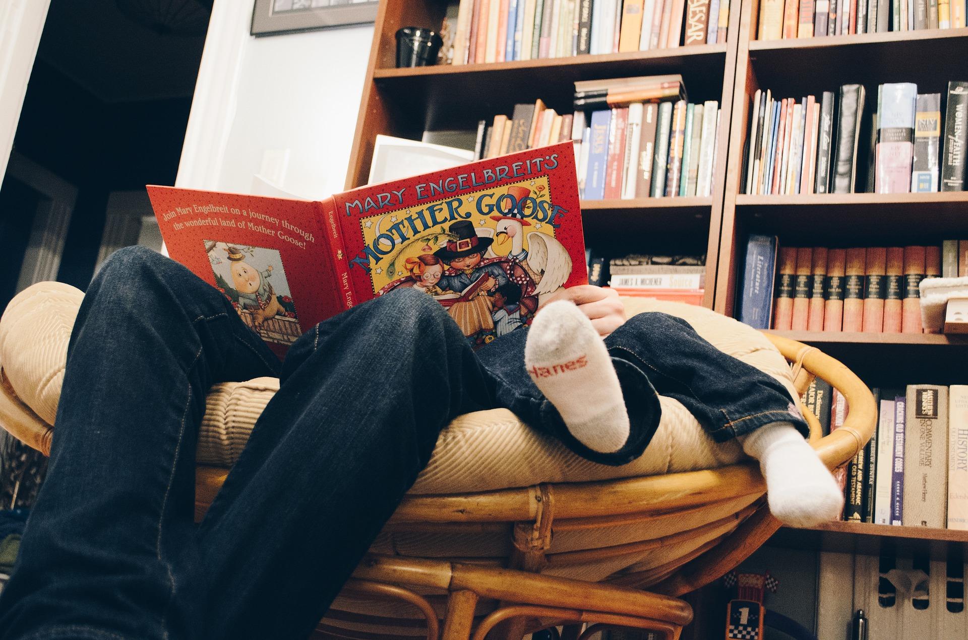 Kinderbuch Seerobbe - Hier wirst du schnell fündig!